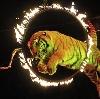 Цирки в Нарофоминске